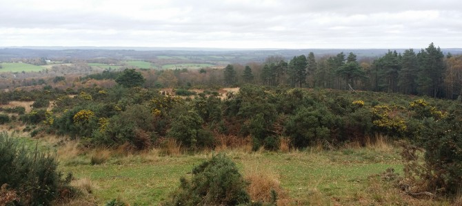Four Counties Car Park Ashdown Forest